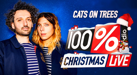 100% LIVE ALBI CATS ON TREE